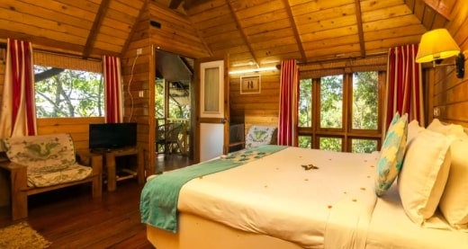 Honeymoon In Kerala Tree House Houseboat 4 Days